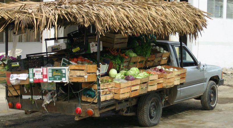 Lechuga truck