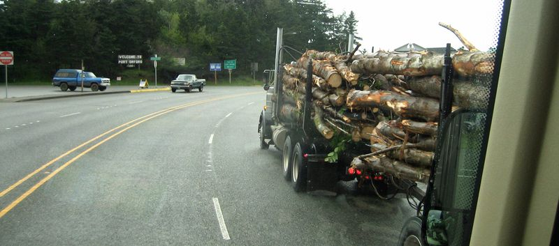 Logging trucks on the highway
