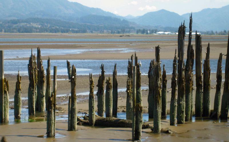 Broken pilings