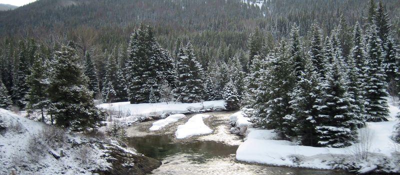 Snowy xmas scene