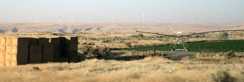 Foggy windmills