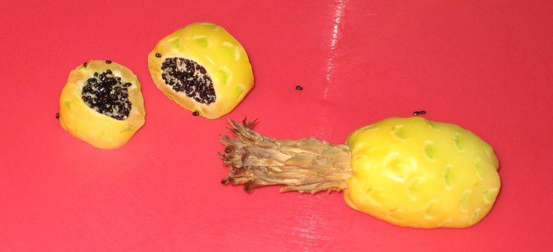 Barrel cactus fruta