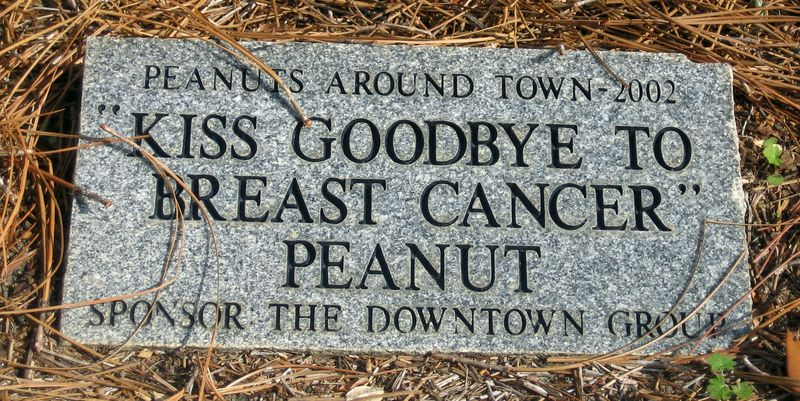 Dothan Civic Center peanut
