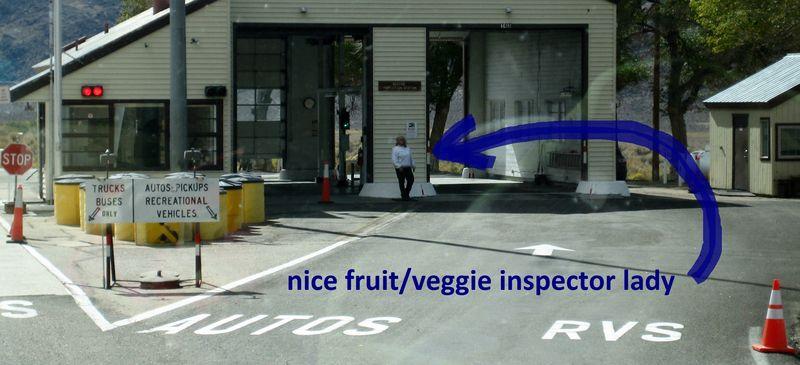 Nice inspector lady
