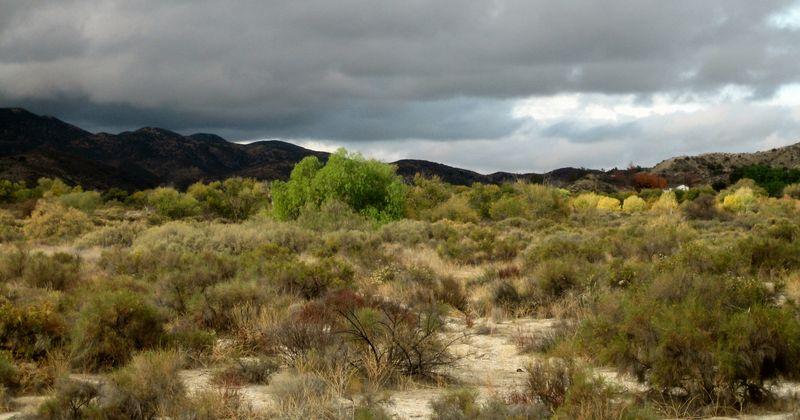 SoCal desert