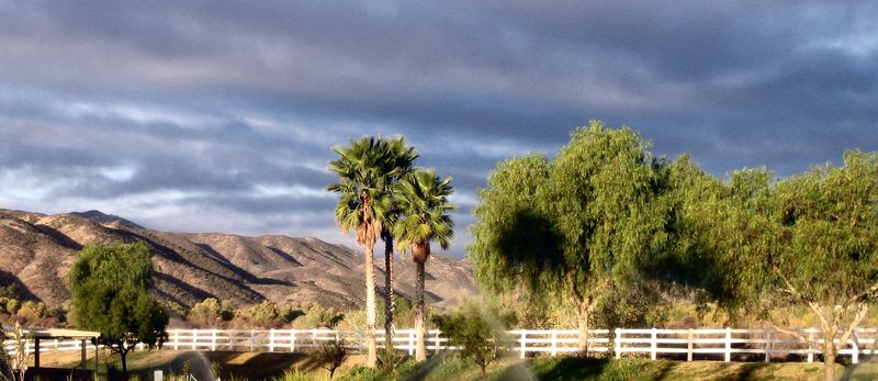 Gorgeous morning sky
