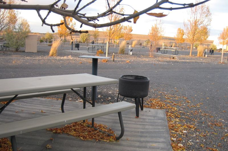Picnic table and firepit
