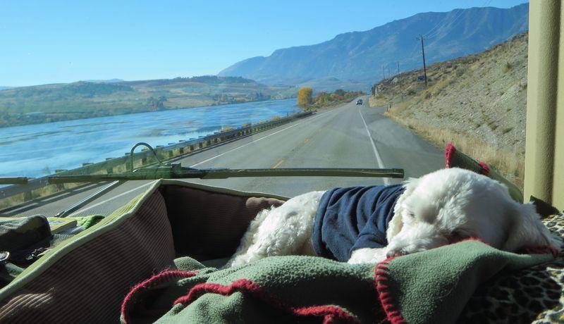 Sleeping thru the scenery