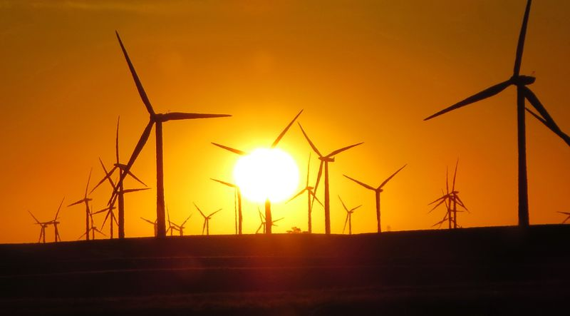Sunrise thru the windmills