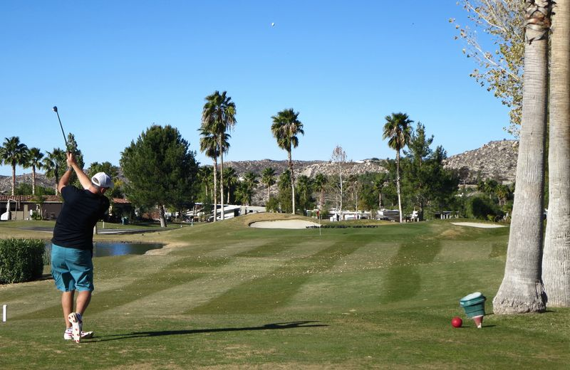 Golfing in the palms