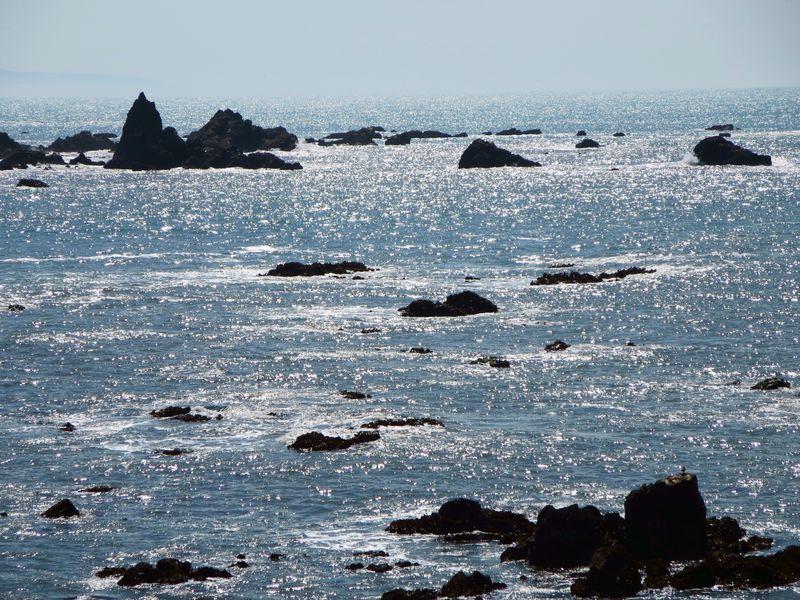 Ocean sparkles in the sun