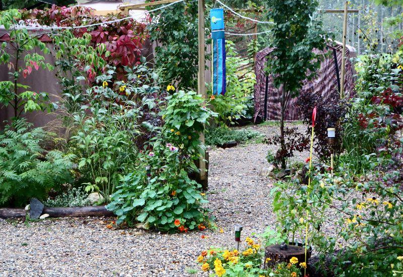 Still lotsa green in the yard