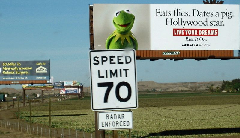 Kermit the frog here