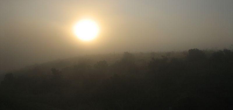Foggy sun