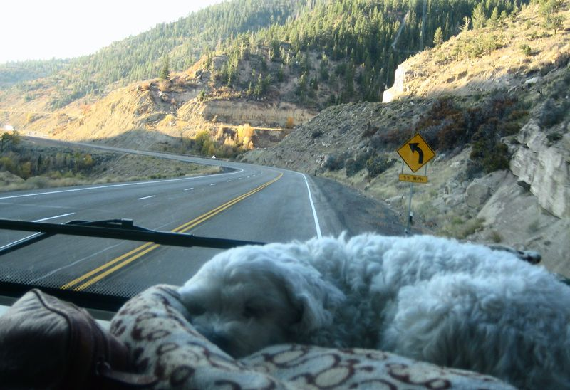 Shelby is too tired to see Utah