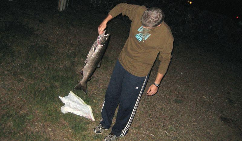 One big fish