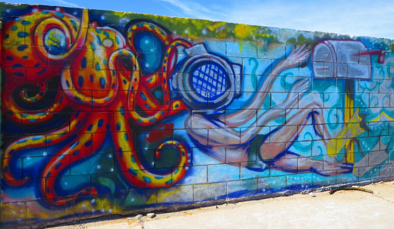 Scuba octopus