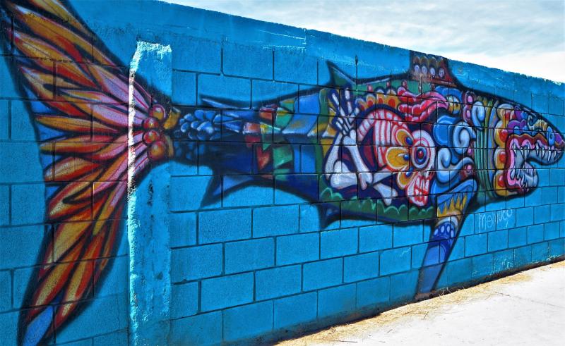 Hippy fish