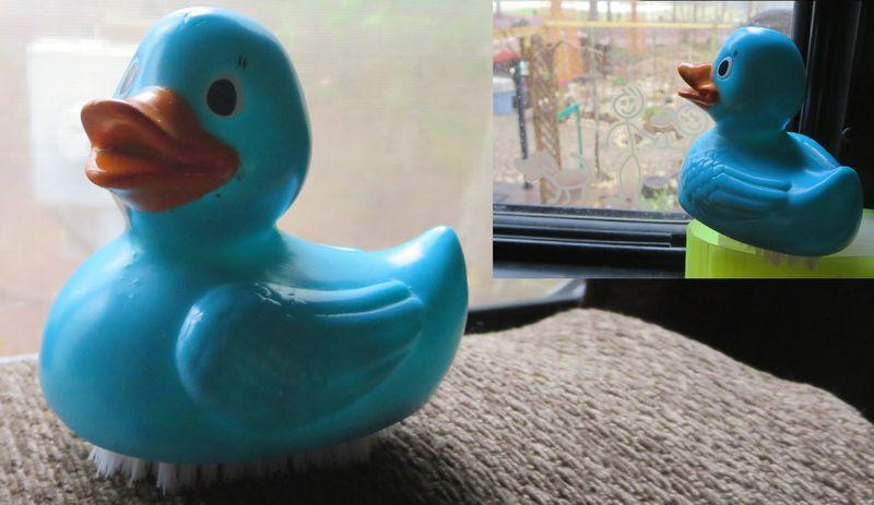 Nail duck scrubby