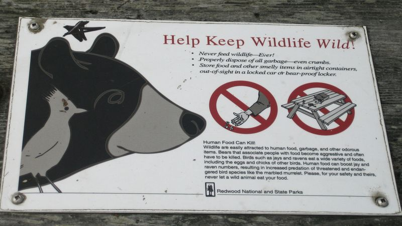 Keep wildlife wild