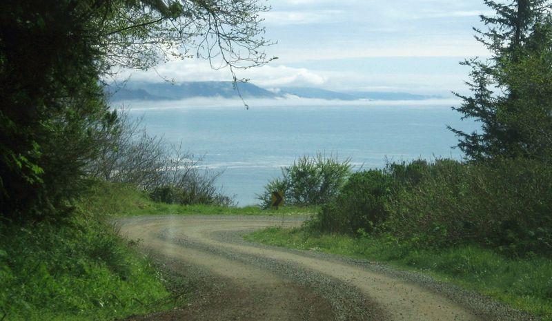 The ocean from a curve in the road