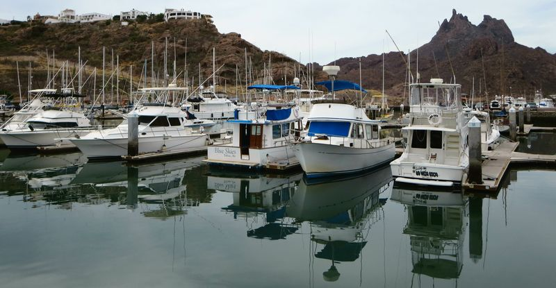 Fishing boats in the marina