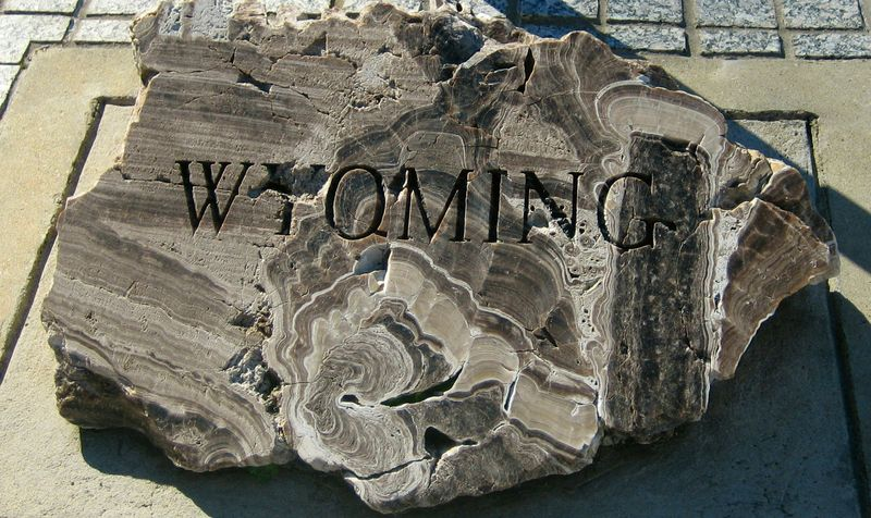 Wyoming's plaque was fossilized wood