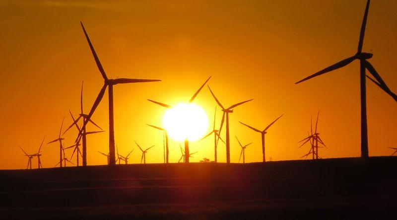 Sunrise thru the windmills