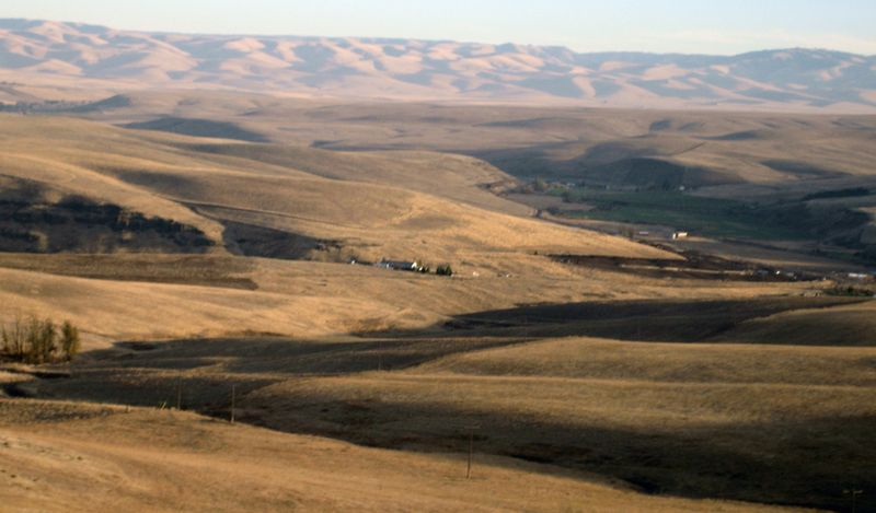 Oregon prairie