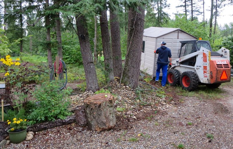 Shed on the bobcat