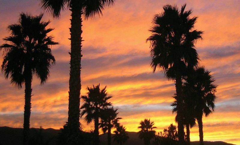 Dramatic Cali sky