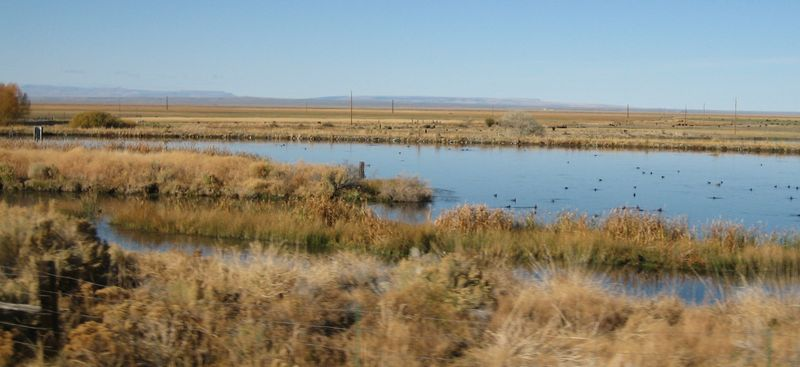 Ponds all over Oregon