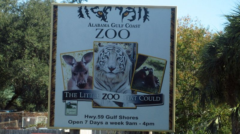 We finally made it to The Gulf Coast Zoo or THE LITTLE ZOO THAT COULD