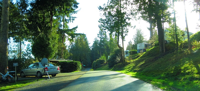Living Forest RV park in the sun