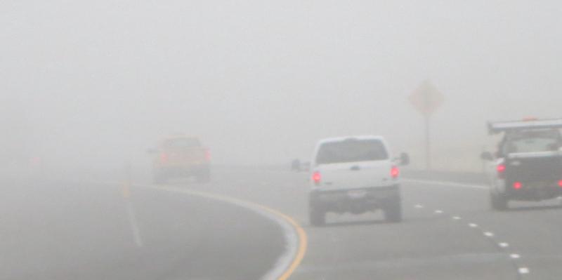Lots fog