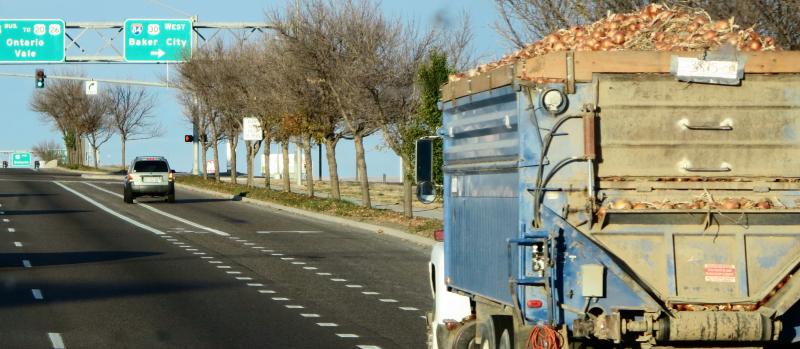 Onion trucker