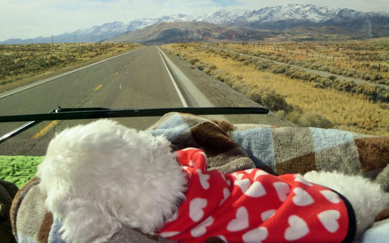 Nevada highway