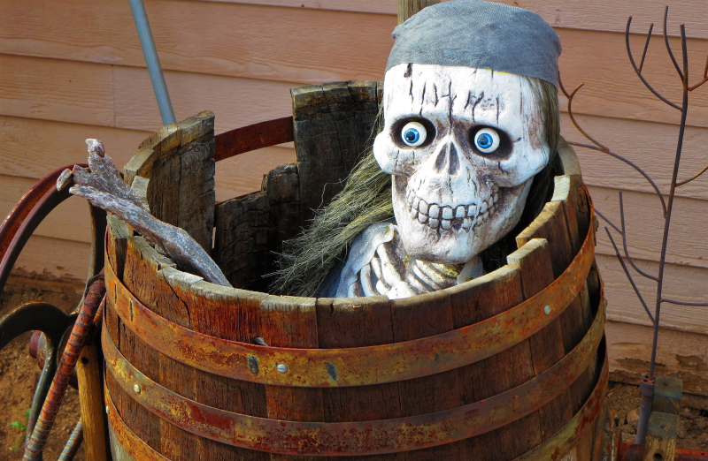 Skeleton in a bucket