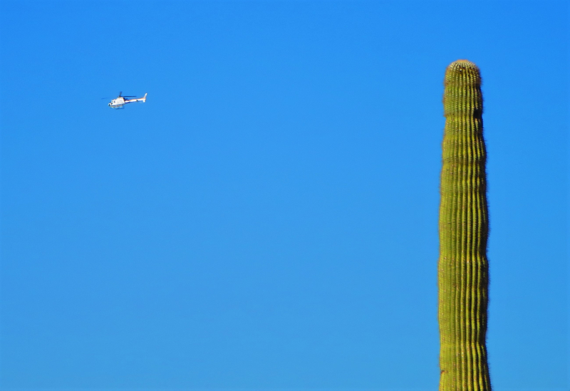 Border patrol flyover